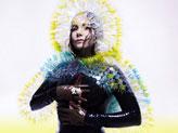 Concert Björk