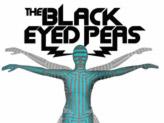 Concert Black Eyed Peas