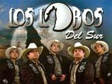 Concert Los Lobos