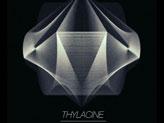 Concert Thylacine