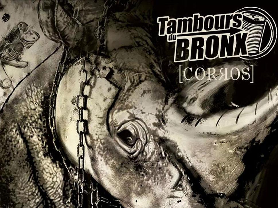 Concert Les Tambours du Bronx