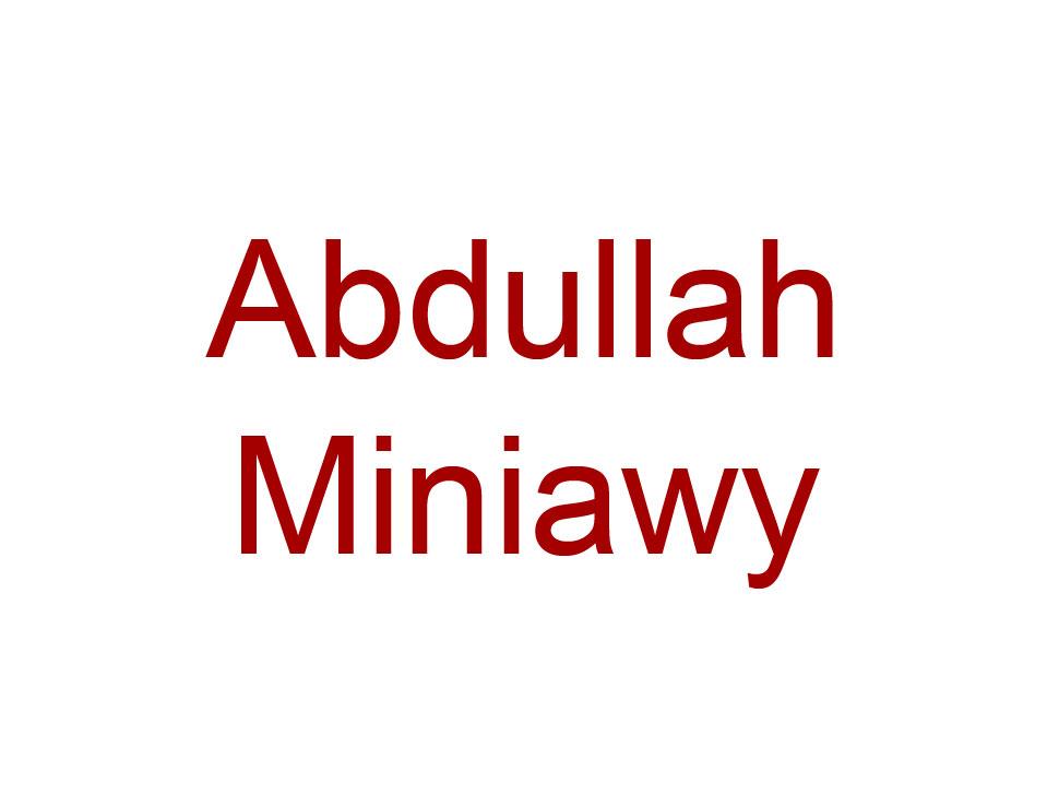 Abdullah Miniawy en concert