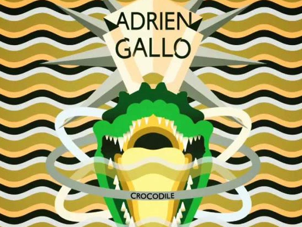 Adrien Gallo en concert