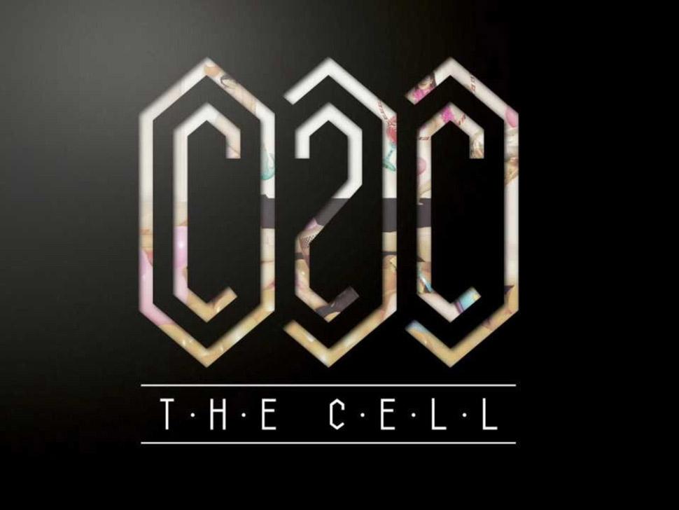 C2C en concert