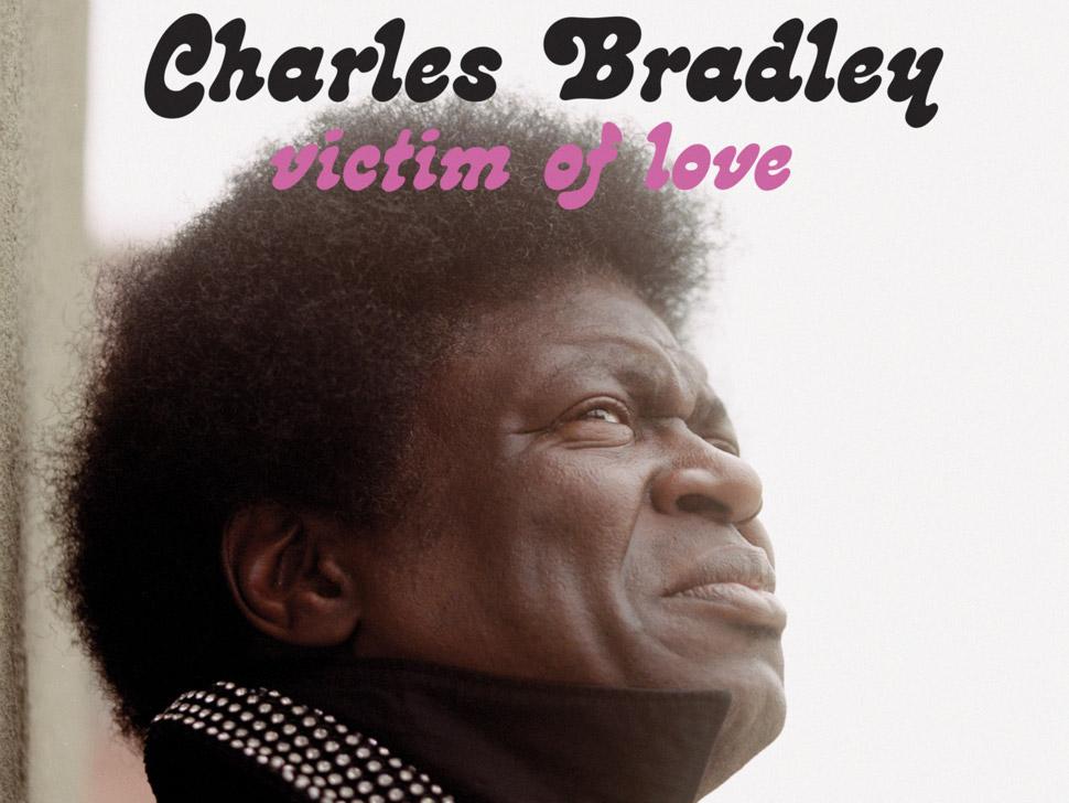 Charles Bradley en concert