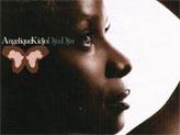 Concert Angelique Kidjo