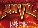 Concert Anvil