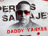 Concert Daddy Yankee