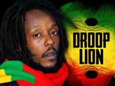Concert Droop Lion