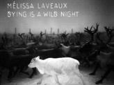 Concert Melissa Laveaux