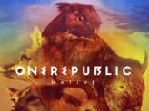 Concert OneRepublic