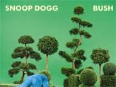 Concert Snoop Dogg