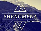 Concert Synapson