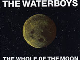 Concert The Waterboys