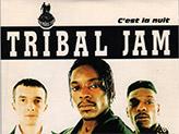 Concert Tribal Jam
