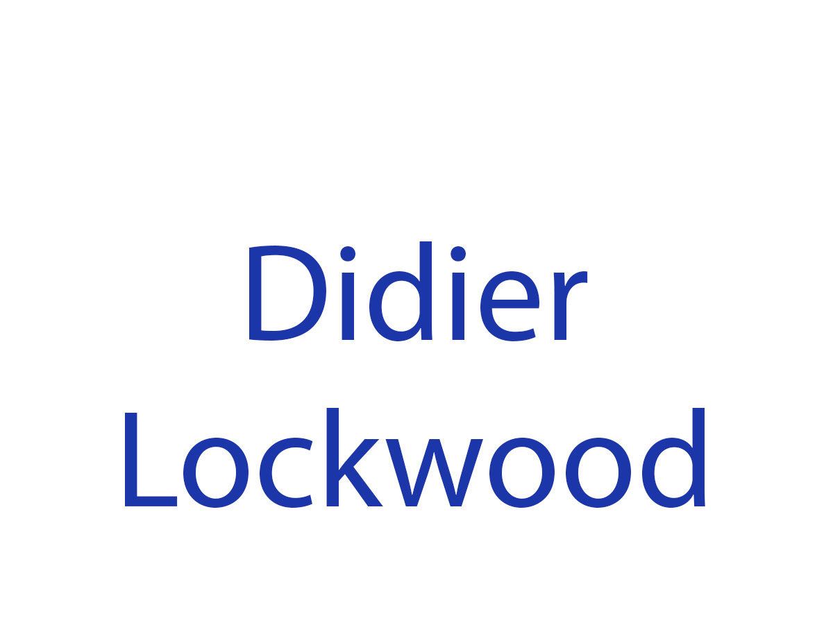 Didier Lockwood en concert