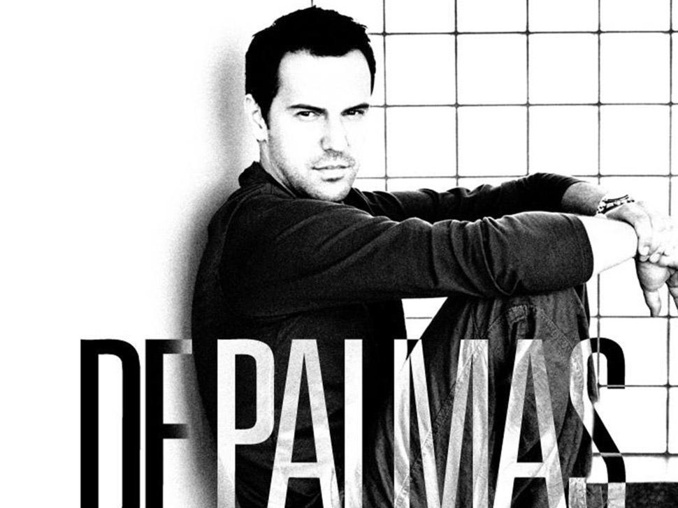 Gérald De Palmas en concert
