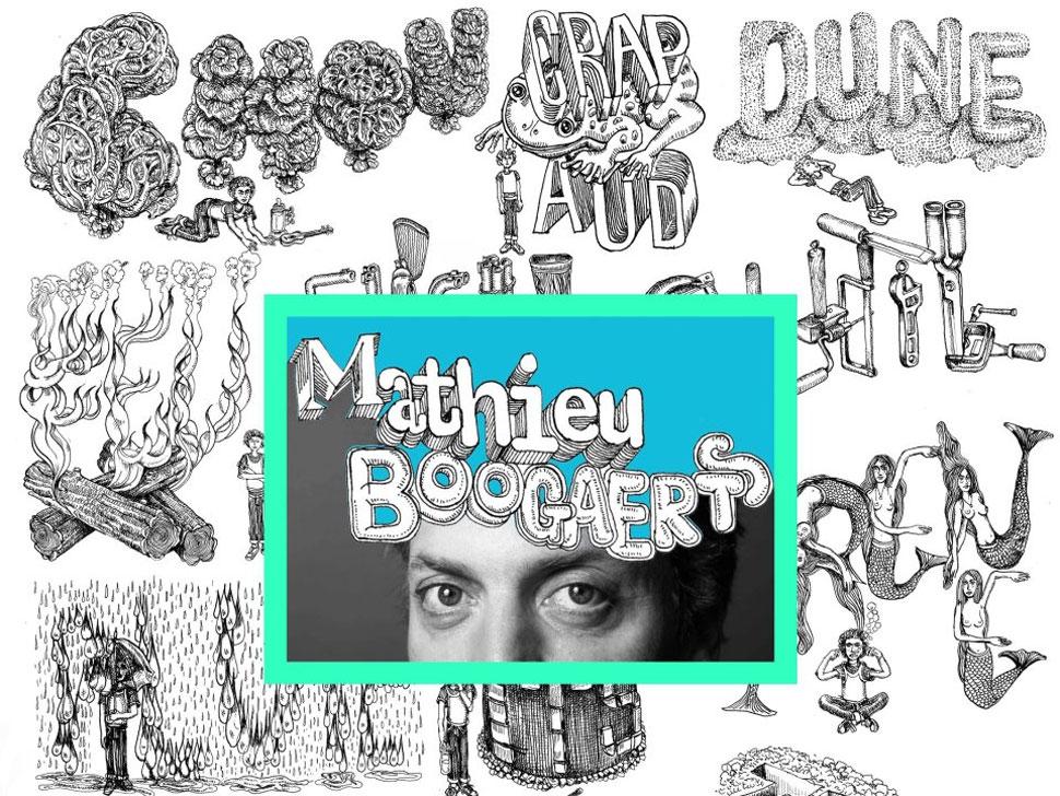 Mathieu Boogaerts en concert
