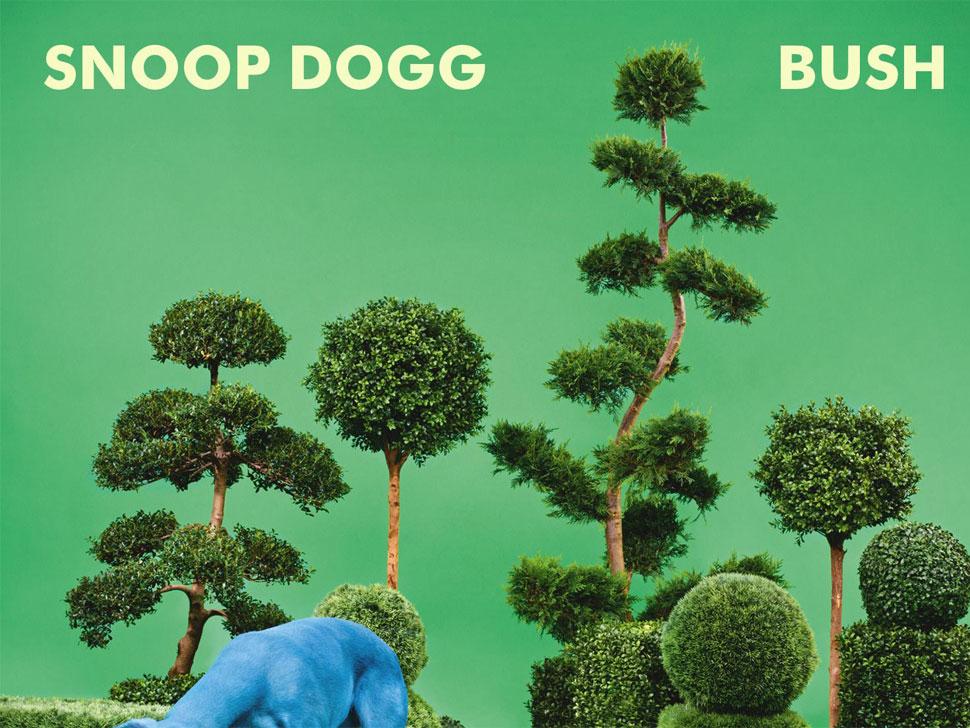 Snoop Dogg en concert