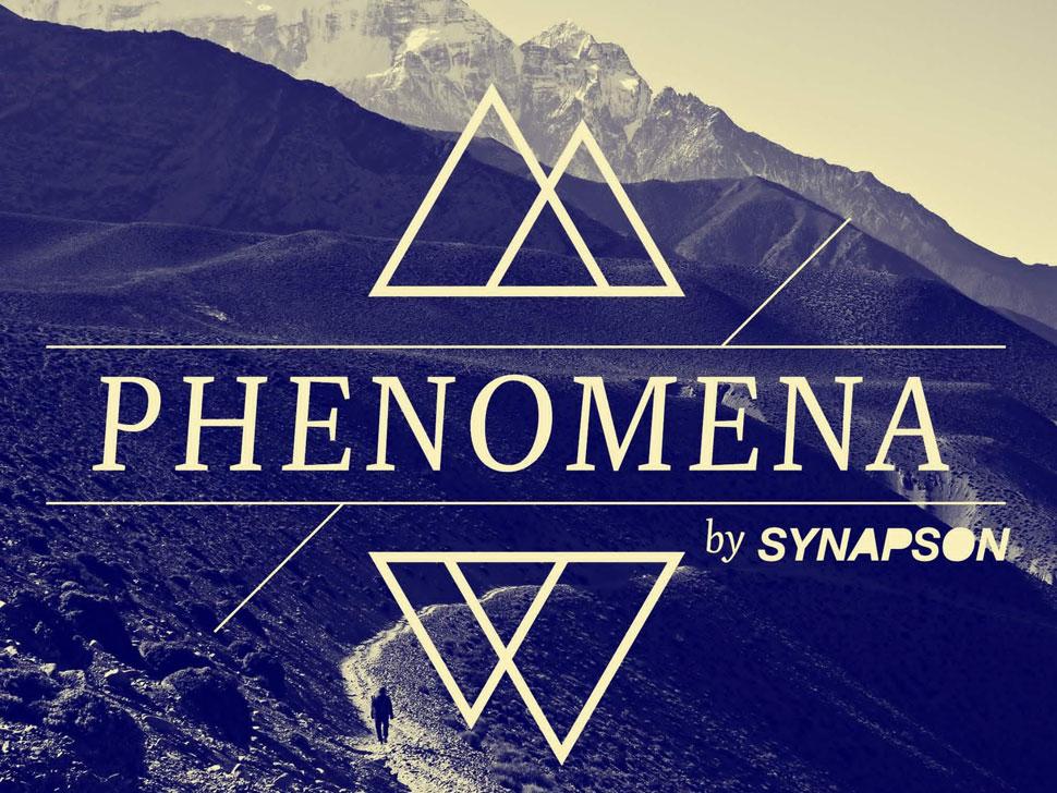 Synapson en concert