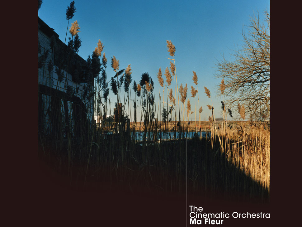 The Cinematic Orchestra en concert